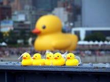 Jätte- Rubber Duck Visits Taiwan Royaltyfri Foto