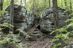 Jätte- stenblock i en skog för Catskill berg arkivbilder