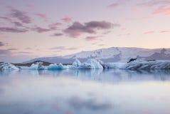 Jätte- stycken av is som flödar på och reflekterar i den kalla sjön med ett enormt glaciar behind, glaciar lagun för jokulsarlon, Arkivfoton