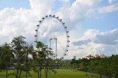 Jätte- svänghjul i framdel av den härliga trädgården Royaltyfri Fotografi