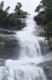 Jätte- Tiered vattenfall med den gröna skogen - Cheeyappara vattenfall, Idukki, Kerala, Indien arkivbild