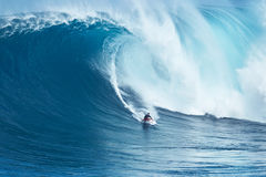 Jätte- våg för surfareritter på käkar Royaltyfri Foto