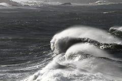 Jätte- vågor Arkivfoto