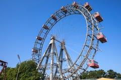 jätte- vienna för ferris hjul Royaltyfria Bilder