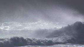 jätte- waves stock video