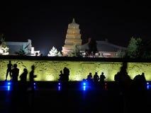 Jätte- Wild gåsPagoda på natten Fotografering för Bildbyråer