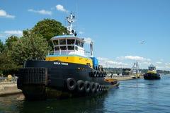 Jättegruppbogserbåtar Royaltyfria Foton