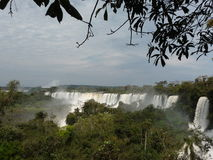 Jättelika Iguazu Falls Arkivbild