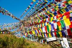 Jättelikt belopp av be flaggor för buddist som dekorerar templet i Nepal Arkivfoto