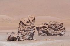 Jätten vaggar - den Atacama öknen - Salar de Tara Arkivbilder