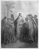 Jésus dit aux disciples qu'ils peuvent sélectionner le maïs Photos stock