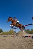 Jóquei com cavalo do puro-sangue Imagens de Stock