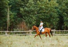 Jóquei da menina que monta um cavalo Fotografia de Stock