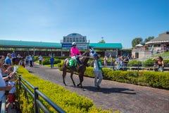 Jóquei do cavalo e do homem que prepara-se para a raça em Emerald Downs Fotos de Stock Royalty Free