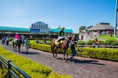 Jóquei do cavalo e do homem que prepara-se para a raça em Emerald Downs Fotografia de Stock Royalty Free