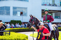 Jóquei do cavalo e do homem que prepara-se para a raça em Emerald Downs Imagens de Stock