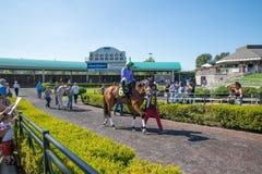 Jóquei do cavalo e do homem que prepara-se para a raça em Emerald Downs Imagem de Stock Royalty Free