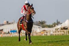Jóquei do cavalo que compete Durban Imagens de Stock