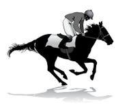 Jóquei em um cavalo Imagens de Stock Royalty Free