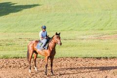 Jóquei Training do cavalo de raça Imagem de Stock