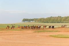 Jóqueis dos cavalos de raça que treinam a paisagem Imagem de Stock