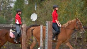 Jóqueis fêmeas a cavalo que galopam video estoque