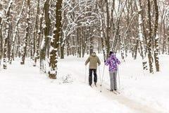 Júntese de la gente que disfruta de esquí de fondo en parque o bosque de la ciudad en invierno Actividades al aire libre del depo imágenes de archivo libres de regalías