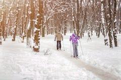 Júntese de la gente que disfruta de esquí de fondo en parque o bosque de la ciudad en invierno Actividades al aire libre del depo fotos de archivo libres de regalías