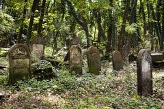 Jüdische Gräber im sehr alten Kirchhof Lizenzfreies Stockfoto