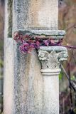 Jüdischer Grundstein blüht Steinsymbol embem Hintergrundkirchhof alte granit Marmor-Gussbuchstaben lizenzfreie stockfotografie