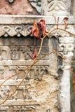 Jüdischer Grundstein blüht Steinsymbol embem Hintergrundkirchhof alte granit Marmor-Gussbuchstaben lizenzfreie stockfotos