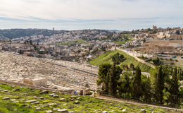 Jüdischer Kirchhof auf dem Ölberg, Jerusalem Stockfoto