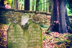 Jüdischer Kirchhof nahe Dobruska stockbilder