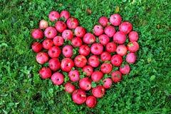 J'aime des fruits Photo libre de droits