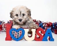 J'aime l'Amérique Photos stock