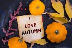 J'aime l'automne photo stock