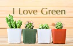 J'aime le concept vert Photos libres de droits