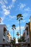 J'aime le grand centre de palmiers de Singapour de la ville photographie stock