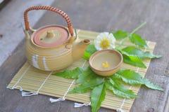 J'aime le thé, pollen Photo libre de droits
