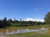 J'aime ma beauté plein Bangladesh Images libres de droits