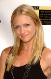 A. J. Cook, Stock Photo