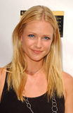A. J. Cook, Stock Image
