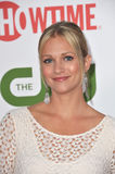 A.J Cook Royalty Free Stock Images