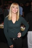 A.J Cook. Criminal Minds star A.J. Cook at party to celebrate the 100th episode of the show. October 19, 2009  Los Angeles, CA Picture: Paul Smith / Featureflash Stock Photos