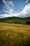 Jęczmienny góra krajobraz zdjęcia royalty free