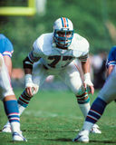 A.J. Duhe Miami Dolphins Royalty Free Stock Photography