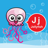 J Jellyfish color cartoon and alphabet for children to learning Stock Image