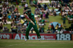J.P.Duminy Royalty Free Stock Photos