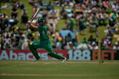 J.P.Duminy Royalty Free Stock Photo