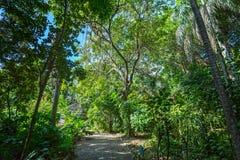 J.R. O'Neal Botanic Garden. Road Town, Tortola Stock Photography
